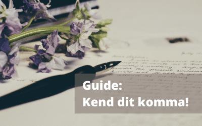 Guide: Kend dit komma!